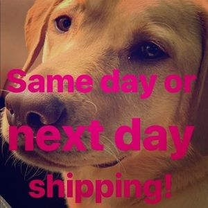 🐶Same day or next day shipping! ✨☀️🔥🤑